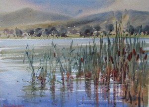 bullrushes watercolour plein air piece julie simmons